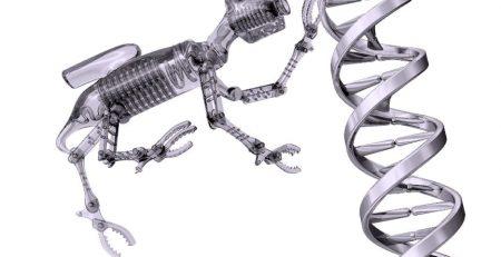 Magnetic Nanobot, Magnetic Microbot, TheLabWorldGroup, TEDMED, We Buy Used Lab Equipment, We Buy Laboratory Equipment, Laboratory Liquidation, Sell Your Lab Equipment, Biotech Lab Liquidation, Pharmaceutical Lab Liquidation, Sell Your Equipment