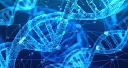 New Study Finds Endometriosis Linked to DNA in Uterine Cells