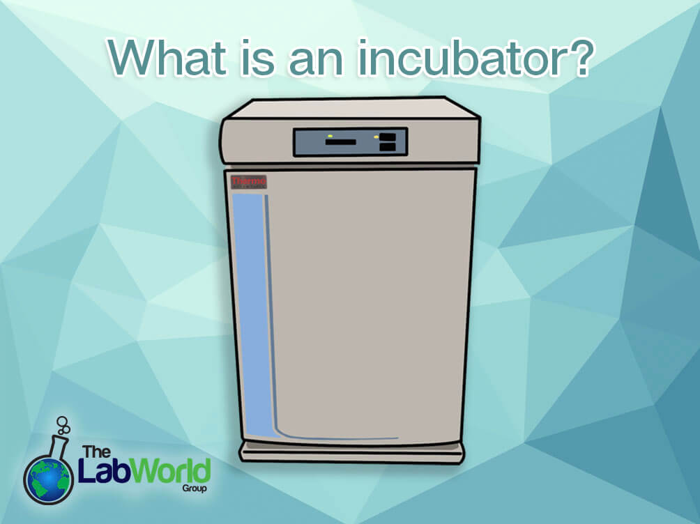 What-is-an-incubator